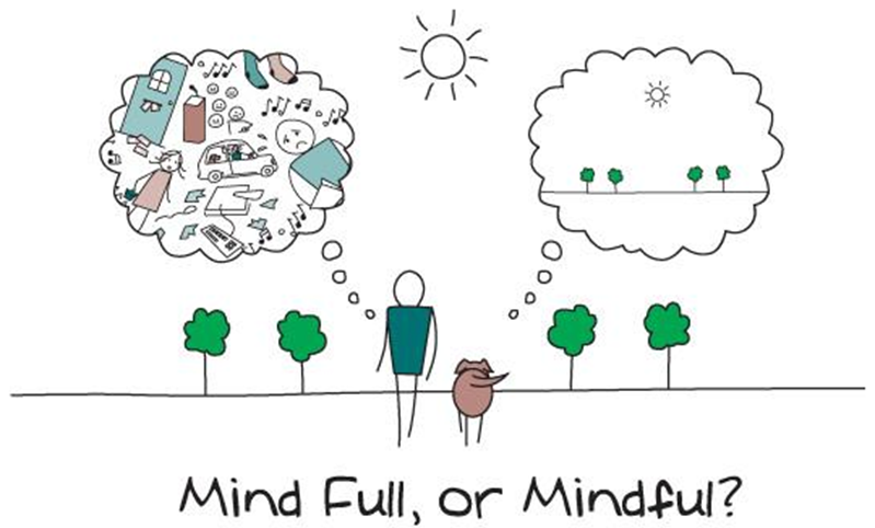 mindfulness, currently wearing presents