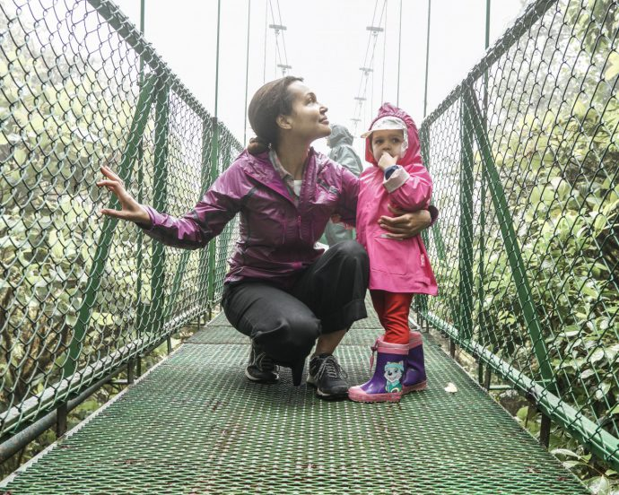 Monteverde/Selvatura Park/Treetop walkways suspension bridges/currently wearing presents