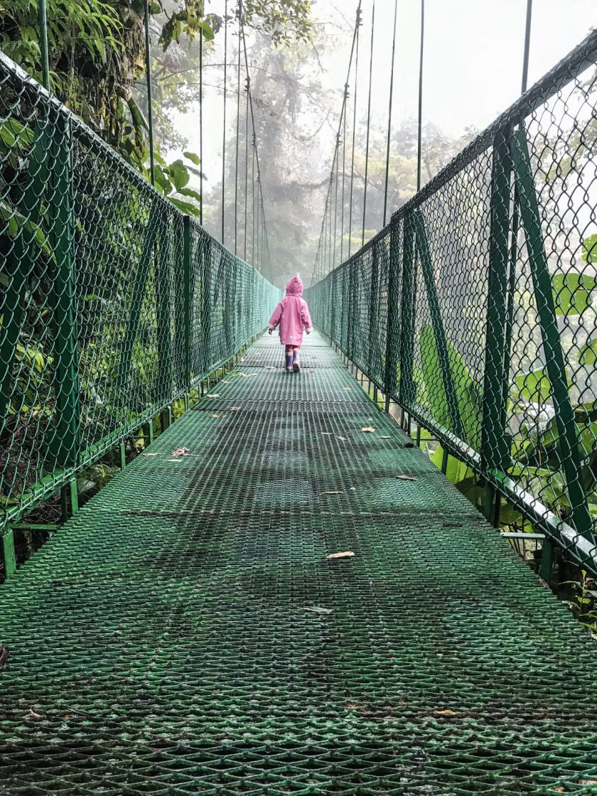 Monteverde/Selvatura Park/Treetop walkways suspension bridges/currently wearing swiss blog