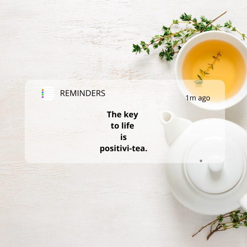 currently wearing- sustainable tea-zero-waste tea
